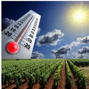climatrechauffementchaleurthermomC3A8treclimatique